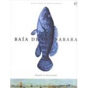 BAIA DE GUANABARA: BIOGRAFIA DE UMA PAISAGEM