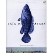 Baía de Guanabara. Biografia de uma paisagem