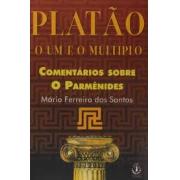 Platão: o um e o múltiplo. Comentários sobre o Parmênides