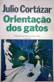 Orientação dos gatos