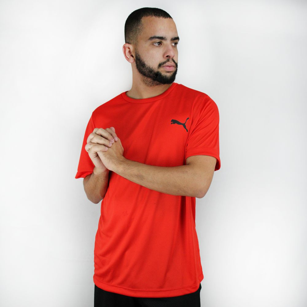Camiseta Puma Active Smaall Logo