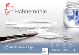 HARMONY WATERCOLOUR 300g T.RUGO 17,8x25,4 10628086