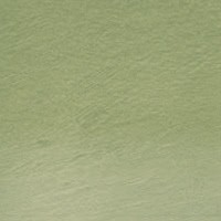 Lápis Carvão Vegetal Colorido Green Moss (TC15) un
