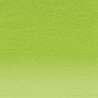 Lápis Pastel Derwent May Green un.