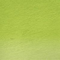 Lápis Watercolour Derwent Grass Green (nº 47) un.