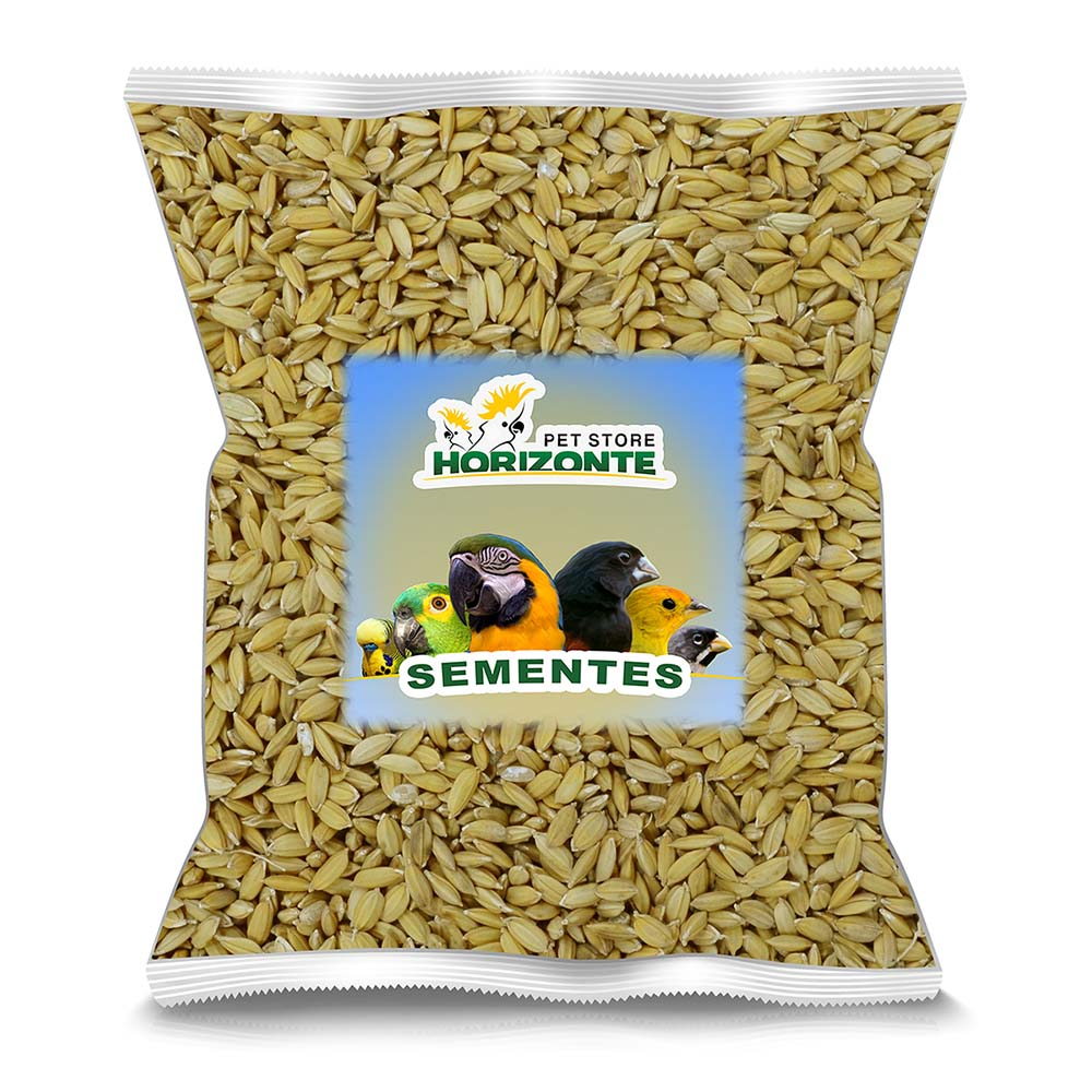 Arroz Cateto - 500g