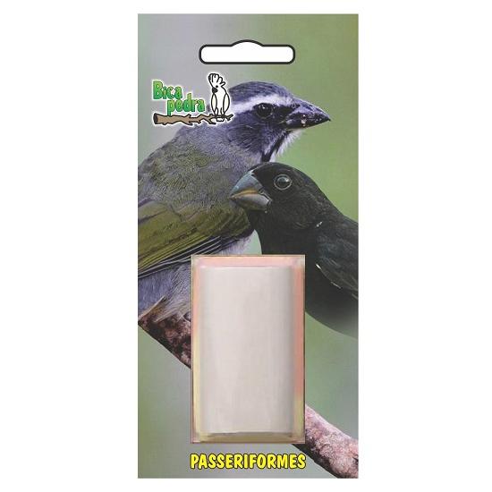 Bica Pedra Passeriformes