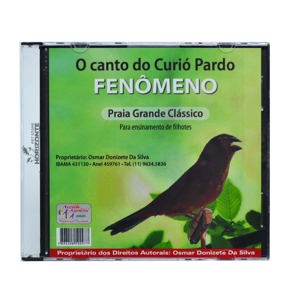 CD - O Canto do Curió Pardo - Fenômeno