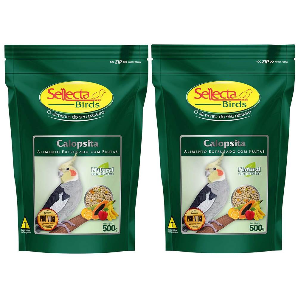 Kit 2 Sellecta Calopsita Natural Com Frutas 500g Alimento