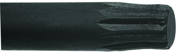 Chave Multidentada 10mm GEDORE 012.702
