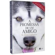 A PROMESSA DE UM AMIGO