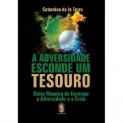 ADVERSIDADE ESCONDE UM TESOURO, A