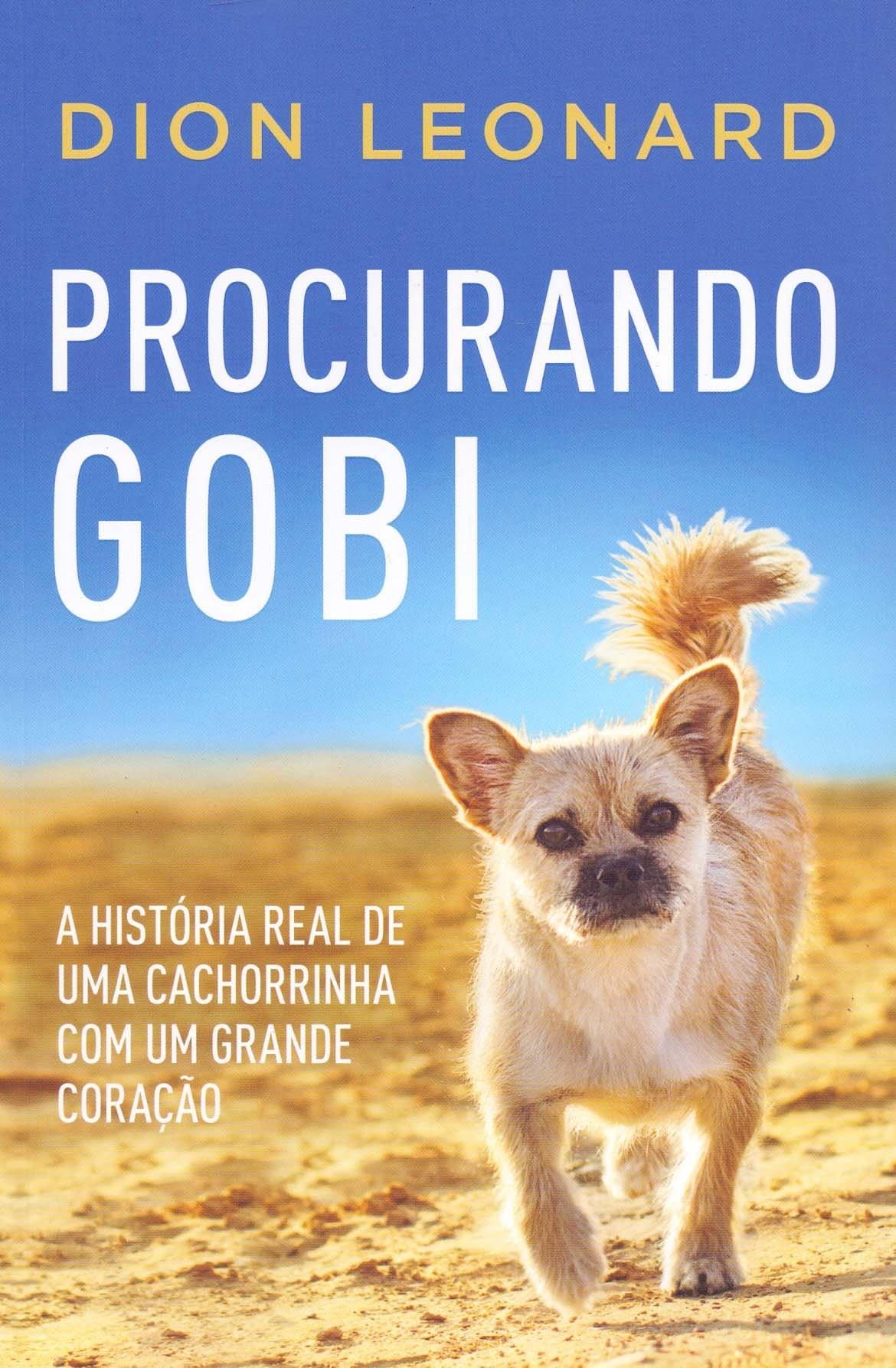 PROCURANDO GOBI