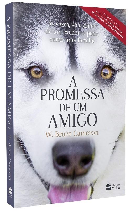 PROMESSA DE UM AMIGO, A