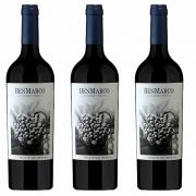 Kit 3x Vinho Tinto Argentino Benmarco Cabernet Franc 2018 750ml