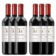 Kit 6 Vinhos Chileno Tinto Tantehue Carmenere 750ml 2019