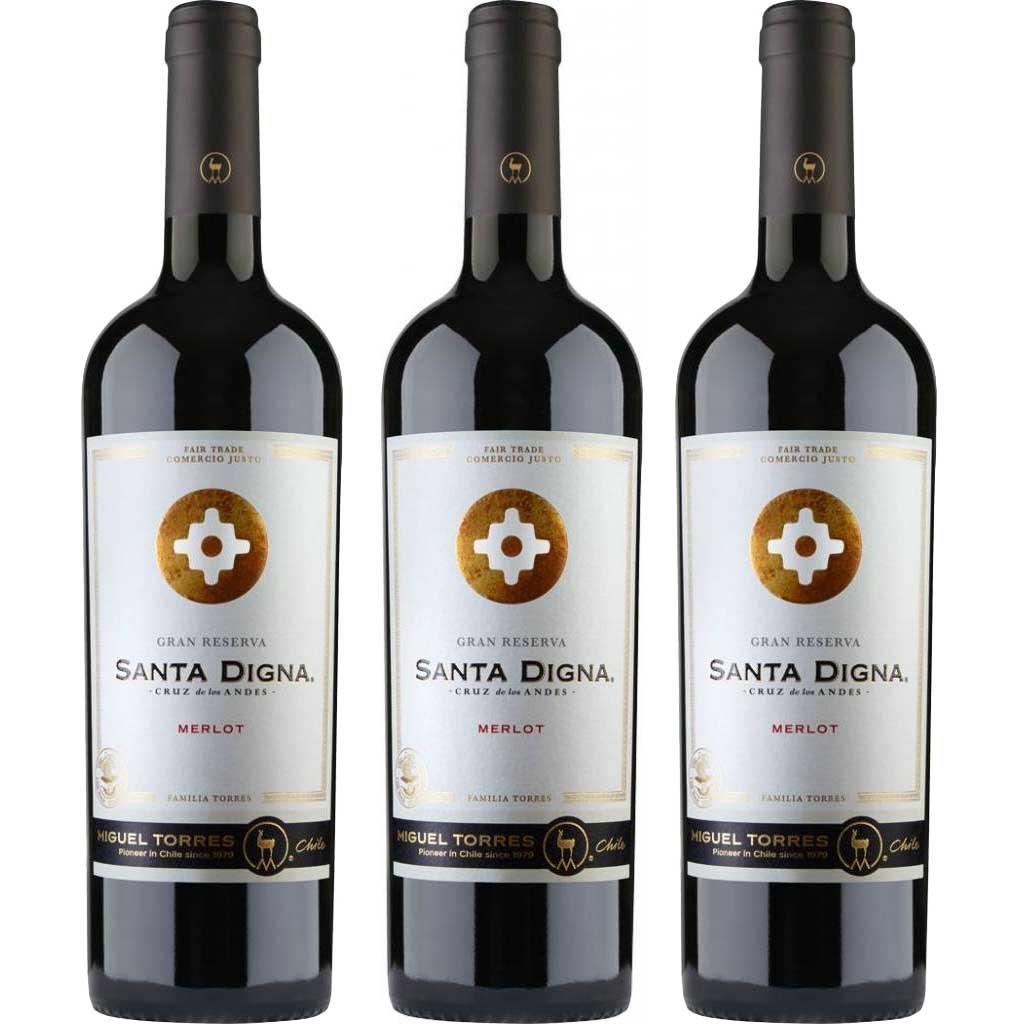 6x Vinho Tinto Chileno Miguel Torres Santa Digna Gran Reserva Merlot 2018 750ml