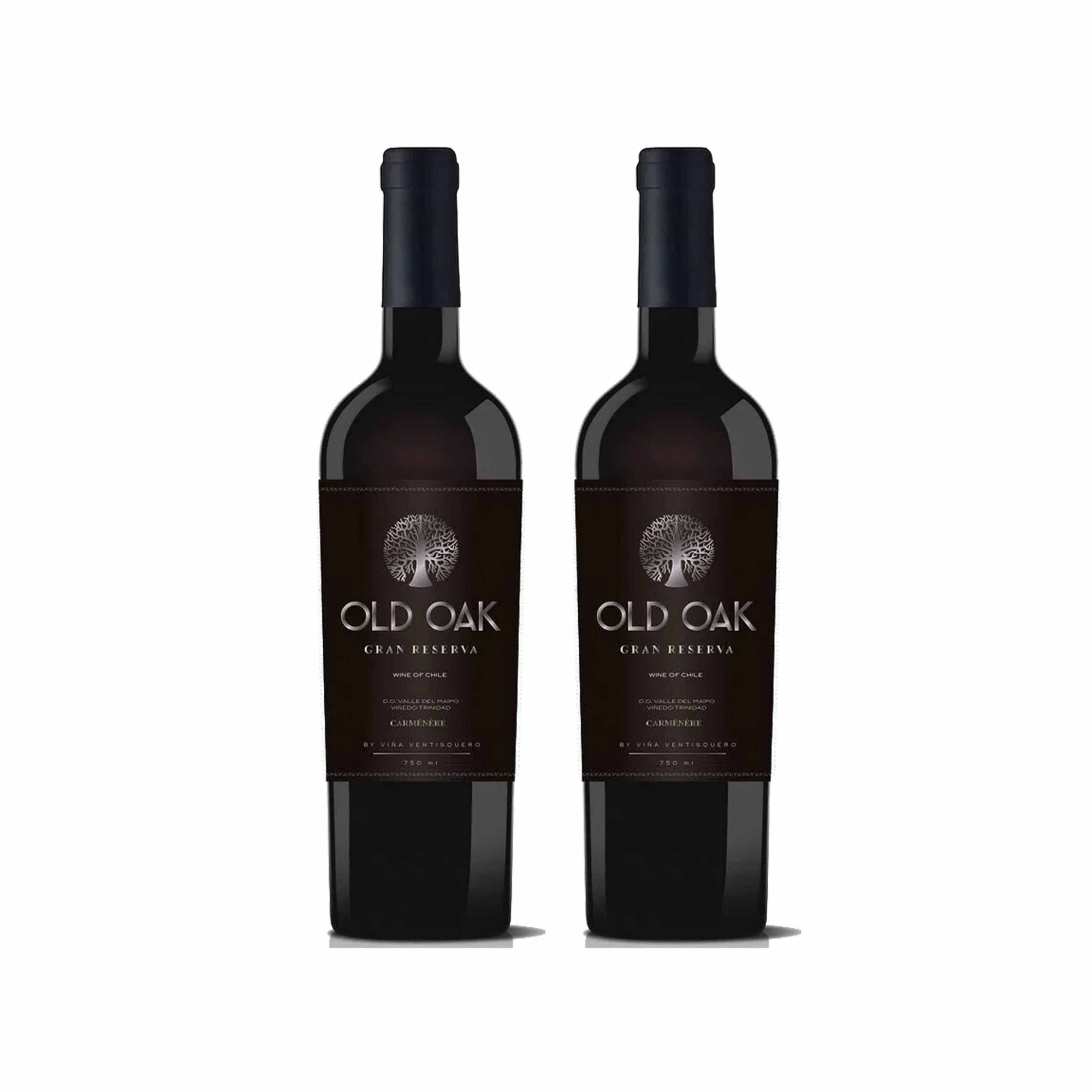 Kit 2x Vinho Tinto Chileno Old Oak Gran Reserve Carmenere 2018