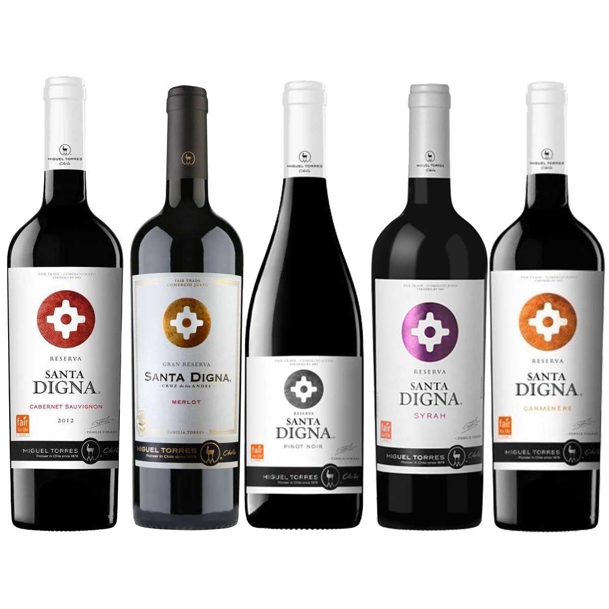 Kit 5 vinhos Tintos Santa Digna Chileno Miguel Torres 750ml
