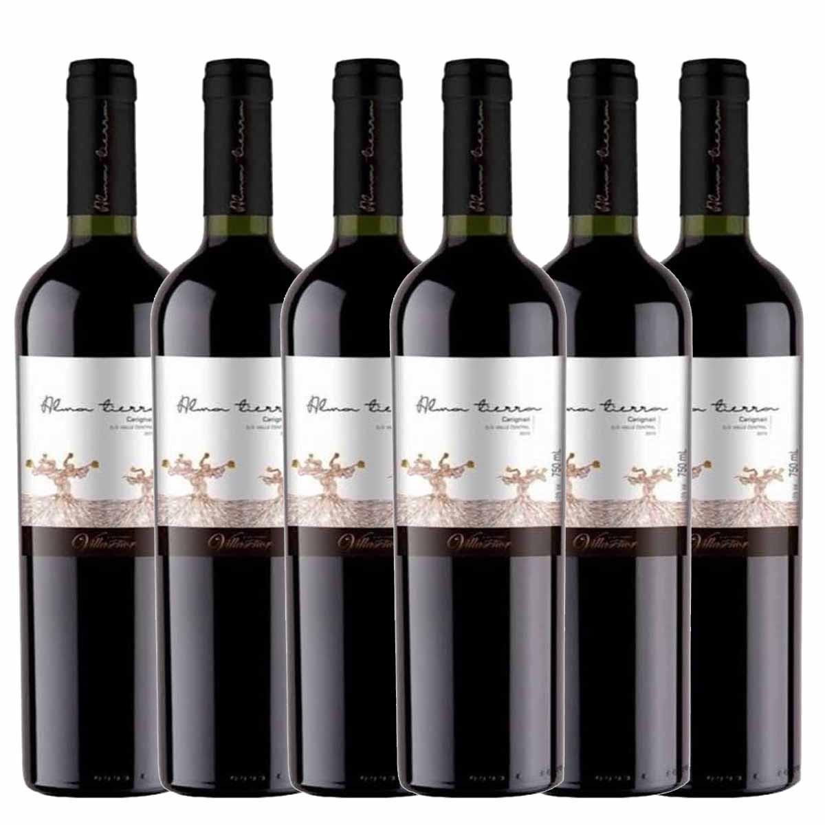 Kit 6x Vinho Tinto Chileno Alma Tierra Carignan 2018