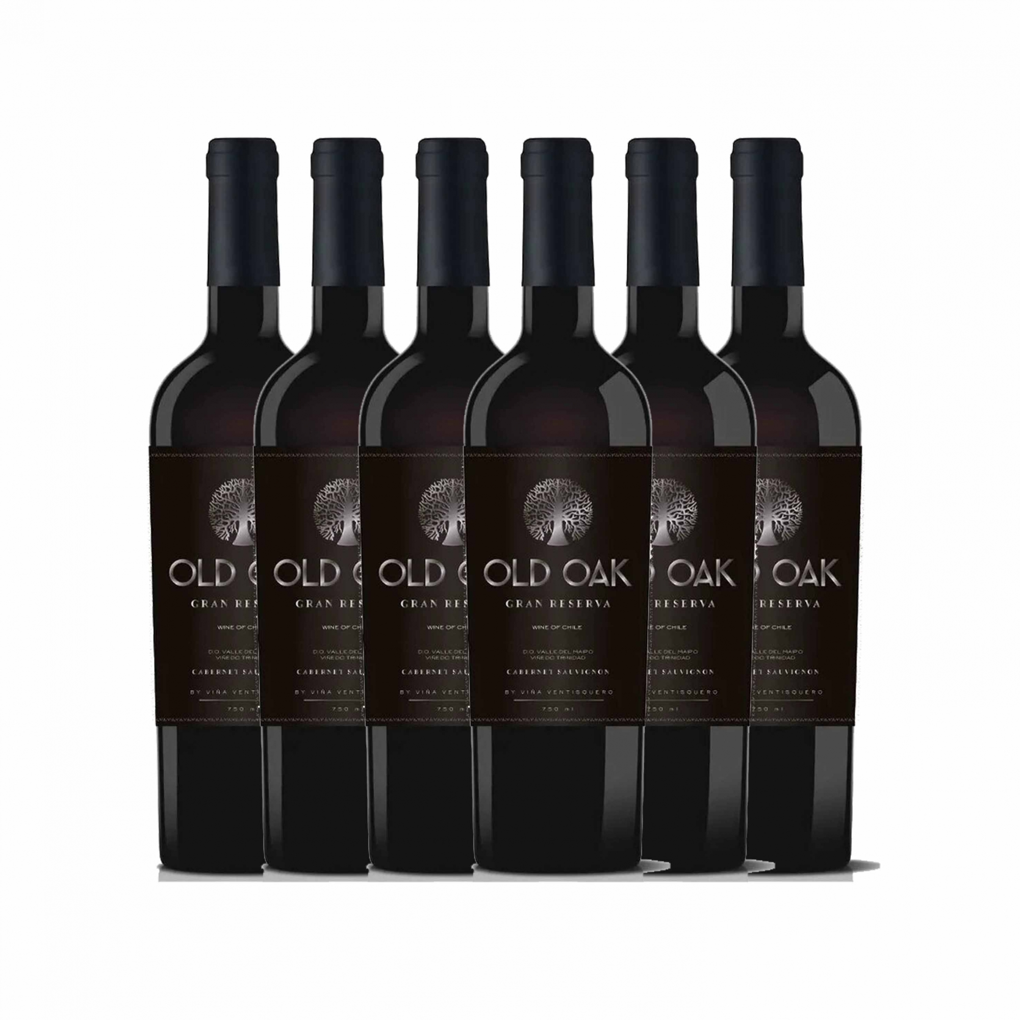 Kit 6x Vinho Tinto Chileno Old Oak Gran Reserve Cabernet Sauvignon 2018