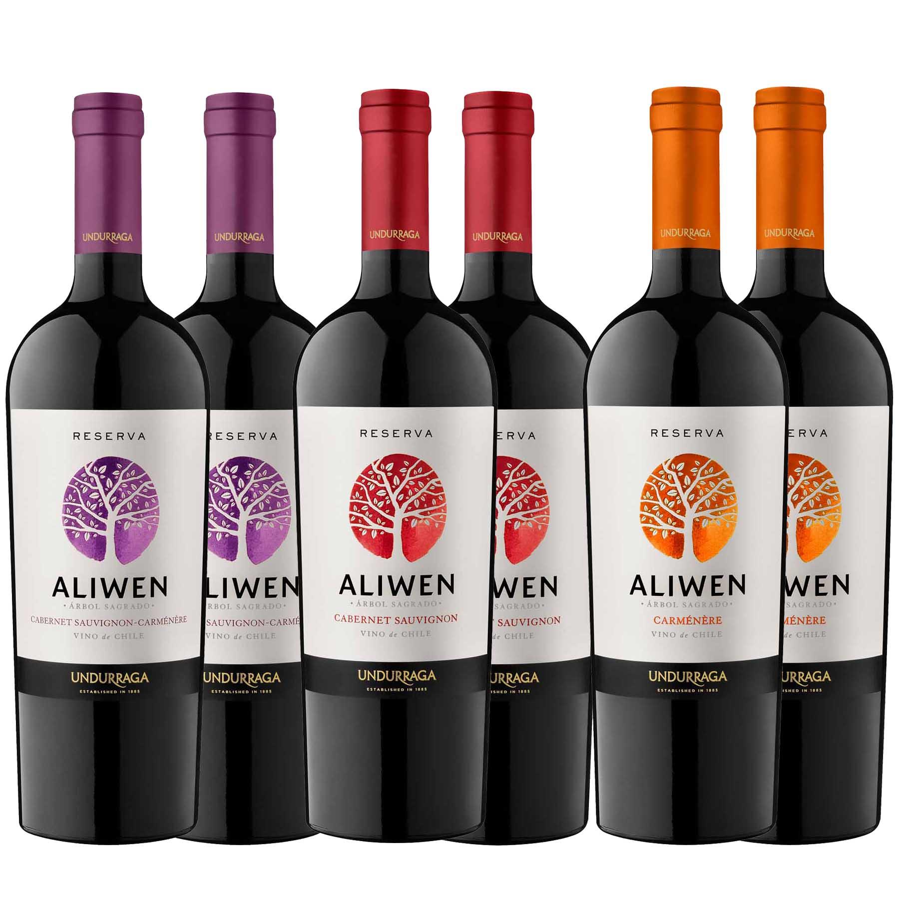 Kit 6x Vinho Tinto Chileno Undurraga Aliwen Reserva 2019
