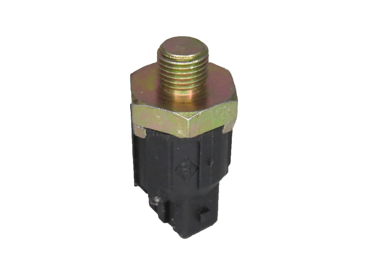 Sensor de Detonacao Twingo/Clio/Scenic/Megane/Kangoo/Express/Duster/Logan/Sandero/Laguna/R19/Symbol/Trafic