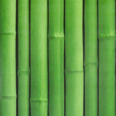 Papel De Parede 45x500cm Bambu