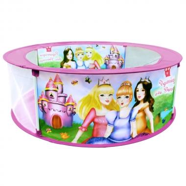 Piscina Divertida Piquenique Das Princesas - DM TOYS