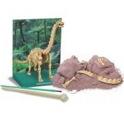 Brinquedo Científico Kit escavação de Esqueleto Braquiossauro