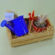 Brinquedo de Madeira Kit Jardinagem 1 Regador , 1 Cachepo.
