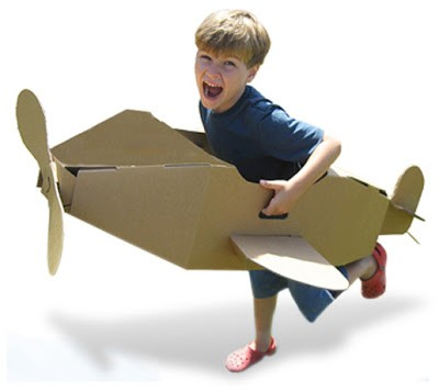 Avião de Papelão Linha BG Brinquedo Educativo