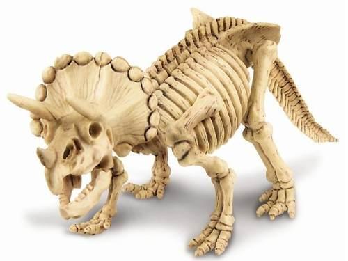 Briqneudo Científico Kit Escavação de Esqueleto Tricerátopo