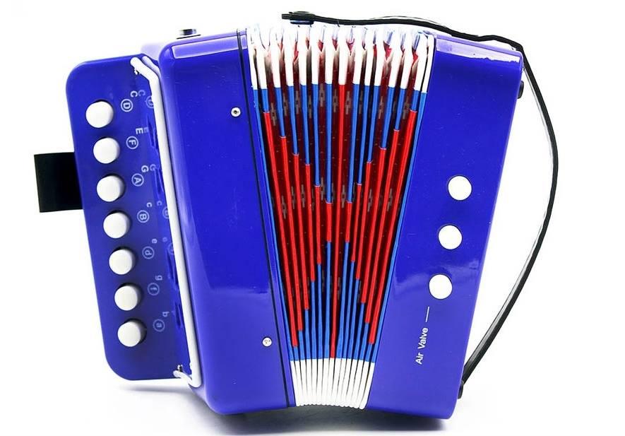Instrumento Musical Infantil Acordeon Cor Azul Custom