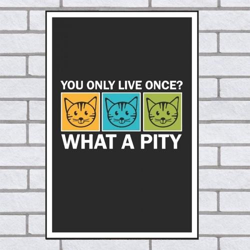 Quadro Decorativo Gato Com Frase