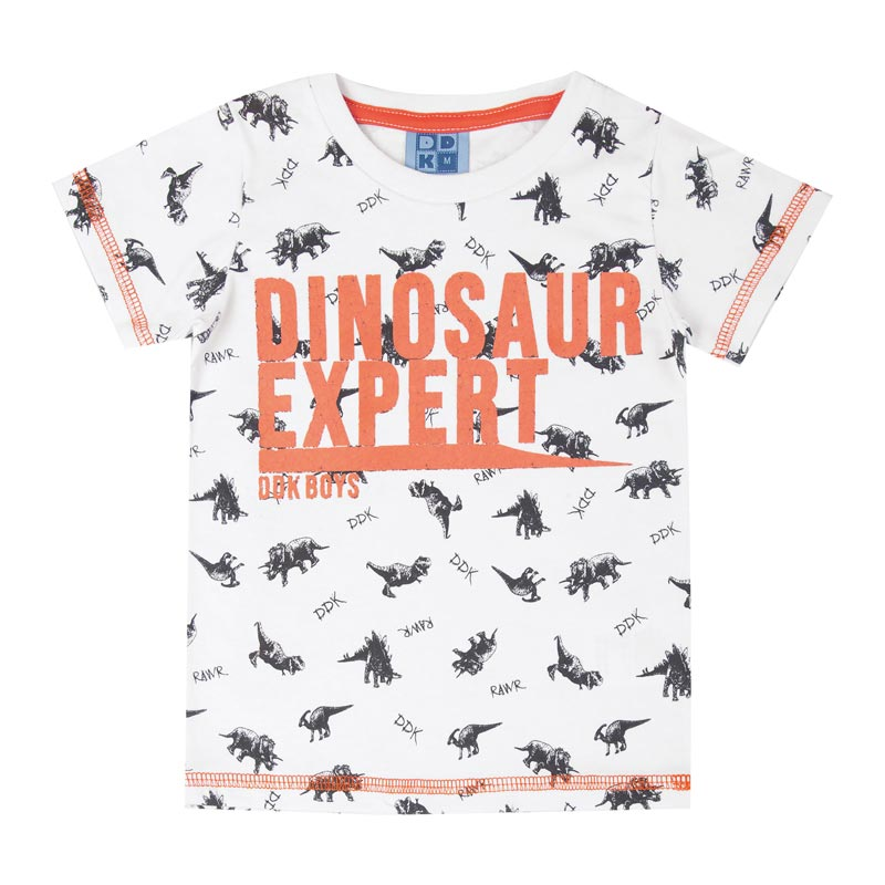 Camiseta DDK Infantil Menino Dinosaur Expert Branco