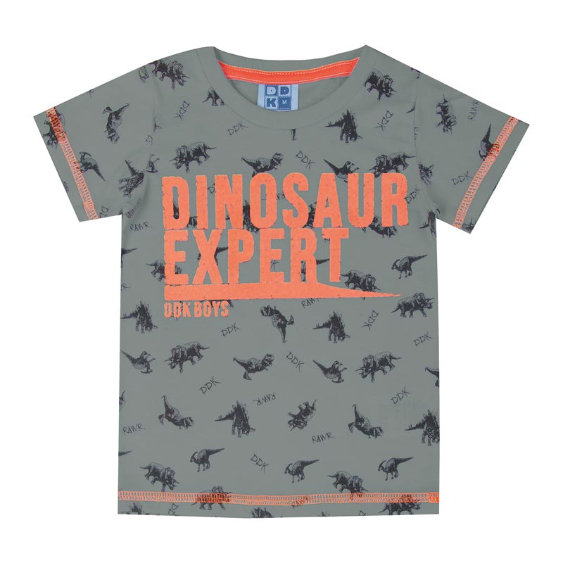 Camiseta DDK Infantil Menino Dinosaur Expert Cinza