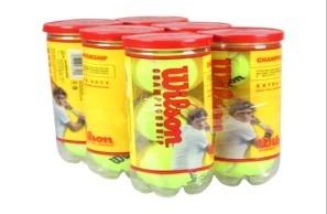Bola de Tenis Wilson Championship PACK com 6 Tubos