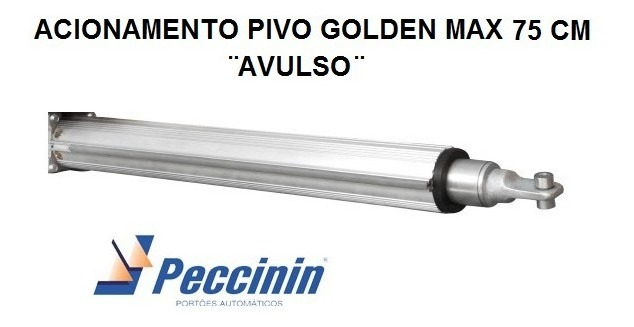 ACION E ACESS PIV GOLDEN MAX - 20004281 - FOLHA ATE 3.5M