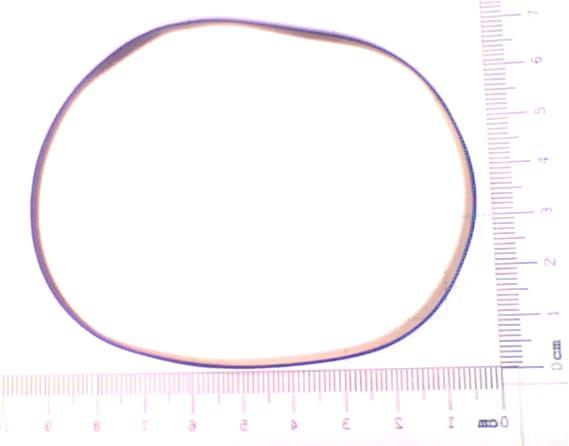Correia GE2 Som Larga  - Medida Dobrada:13cm CX08