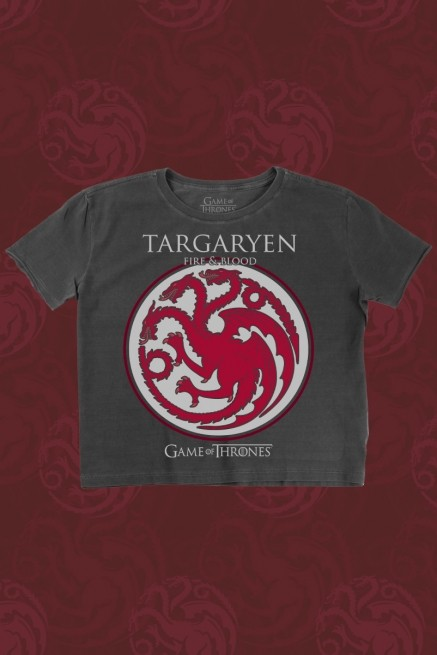 Camiseta Box Game of Thrones Targaryen Brasão