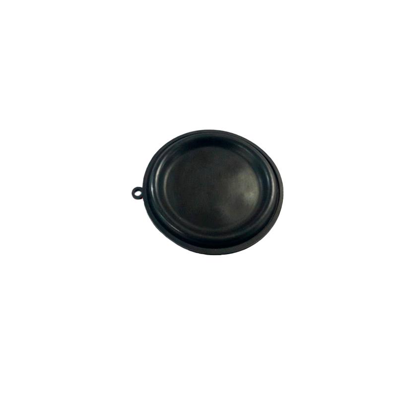 Diafragma Membrana Aquecedor Rinnai Lorenzetti Lz2000 Rinnai 181 - G259B