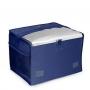 Bolsa Térmica Azul Marinho 15L - Mor