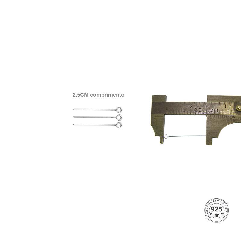 Alfinete Cabeça Argola Prata 950 de 2.5x0.60 - 06 peças - PR020  - ArtStones